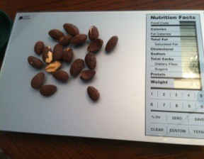 Product Review Perfect Portions Scale Rantings Of An
