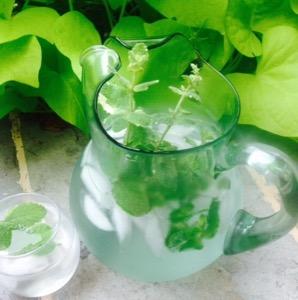 Photo 2 mint water